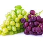 rote & grüne Weintrauben
